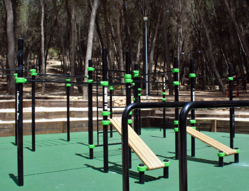 Park of Calisthenics