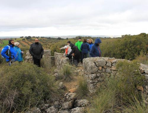 Visitas Guidas a la Batalla del Jarama